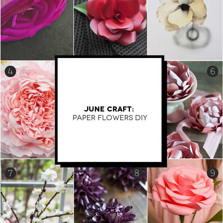 June Craft: realizzare fiori di carta