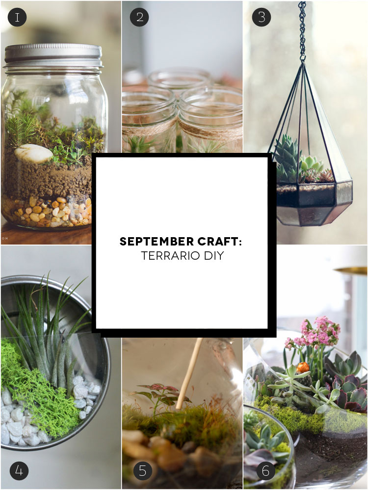 September craft 6 semplici terrari fai da te inspire we for Cerco cose usate