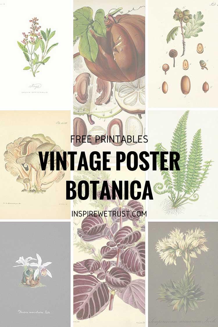 Vintage posters: arte gratuita per la casa